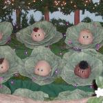 Baby Cabbages