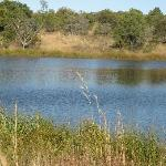 the lake at mabula