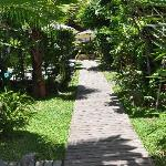 Walk way to the rooms