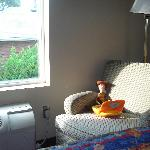 Caught Woody chillin' on the chair by the window.