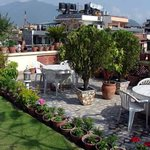 Overview of our roof garden overlooking Kathmandu