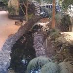 indoor waterfall, rivers