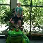The frog outside the special frog exhibit