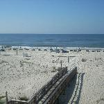 Gulf Shores Alabama