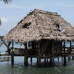 Foto de Plantation Beach Resort