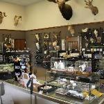 Showroom.. Many Gifts under $5.00