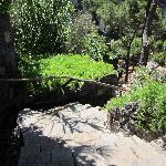 Uno dei vialetti immersi nella natura