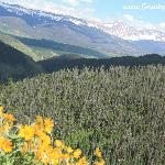 Ride the chairlift to Vista Ridge and see the peaks of the Rocky Mountains