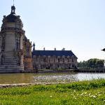near the Chateau