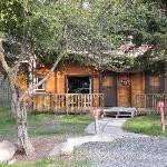 cabin # 17