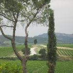 Views of Montepulciano from Villa