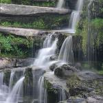 Waterfall at Ledges