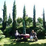 great garden & great danes!