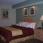 奧蘭多大都市度假酒店