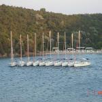 Flotilla of Nielsen yachts
