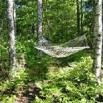 Relax on One of the Many Hammocks around The Welsh Hills Inn - Granville, OH
