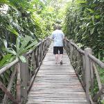 Boardwalk to On the Rock