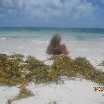 Entre las algas