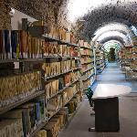 Biblioteca di Facoltà realizzata nel piano seminterrato del '500