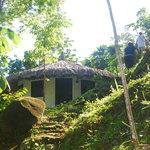 Foto de Reserva Biologica Caoba