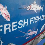 """Fresh fish daily"""