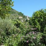 In the garden of Villa Paggi