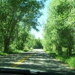 Highway 82