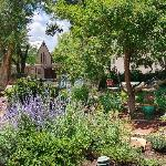 Peaceful gardens for reading and relaxing