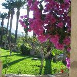 Photo de Villa Pilati
