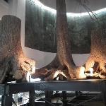 北海道開拓記念館その2