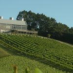Mahurangi River Winery and Restaurant