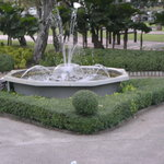 Foto de Chatuchak Park