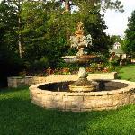 wonder full fountain