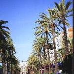 Photo de Hotel Athene Neos