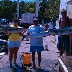 2 Mahi Mahi's and the Kingfish