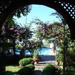 Le jardin depuis l'entrée de notre chambre