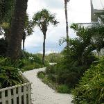 Pathway out to beach