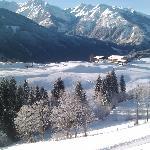 Blick im Winter