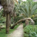 Orto Botanico, Cagliari
