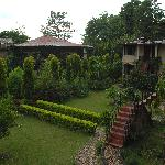 Foto de Machan Wildlife Resort