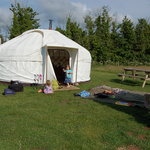 our home, Buttercup yurt