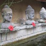 buddha busts outside the reception