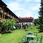 Innenhof - Liegewiese