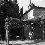 The 5 bedroom villa