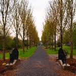 Adare's Downtown Park