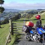 Take the high road or the low road -    Otago Peninsula is a stunning ride
