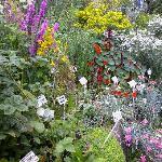Weaver's Garden