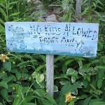 Cute sign by the pond
