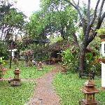 Garden n°2