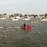 Annapolis waterfront - easy walk from hotel